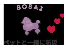 bosai